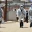 ¡A no relajarse!: En dos días Jujuy reportó más de 100 nuevos casos de coronavirus