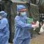 En Jujuy hay 17.430 personas recuperadas y 37 casos activos de coronavirus