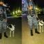 """""""Falopa"""", la historia del perro policía jujeño que revolucionó las redes sociales de todo el país"""